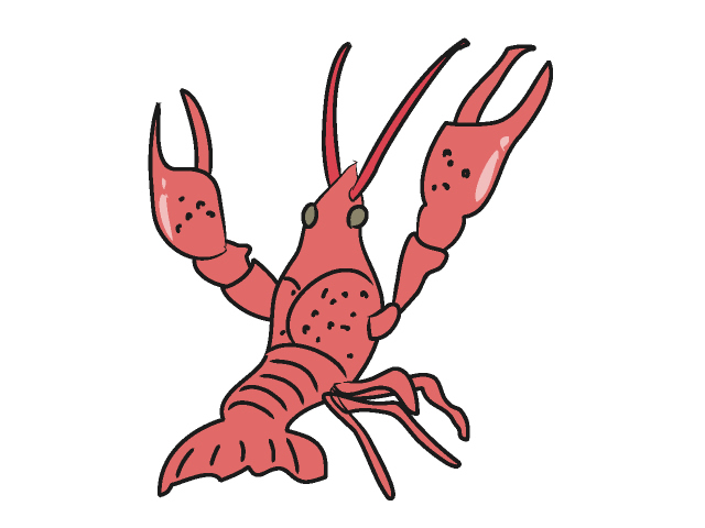 banner library stock Free cliparts download clip. Crawfish clipart