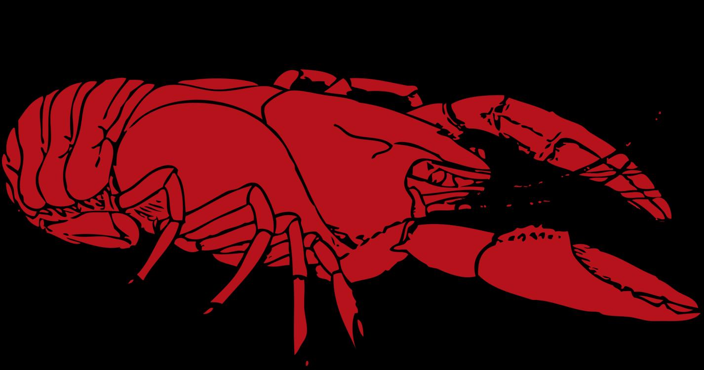 picture transparent download Crayfish Lobster Louisiana crawfish Crustacean Drawing free