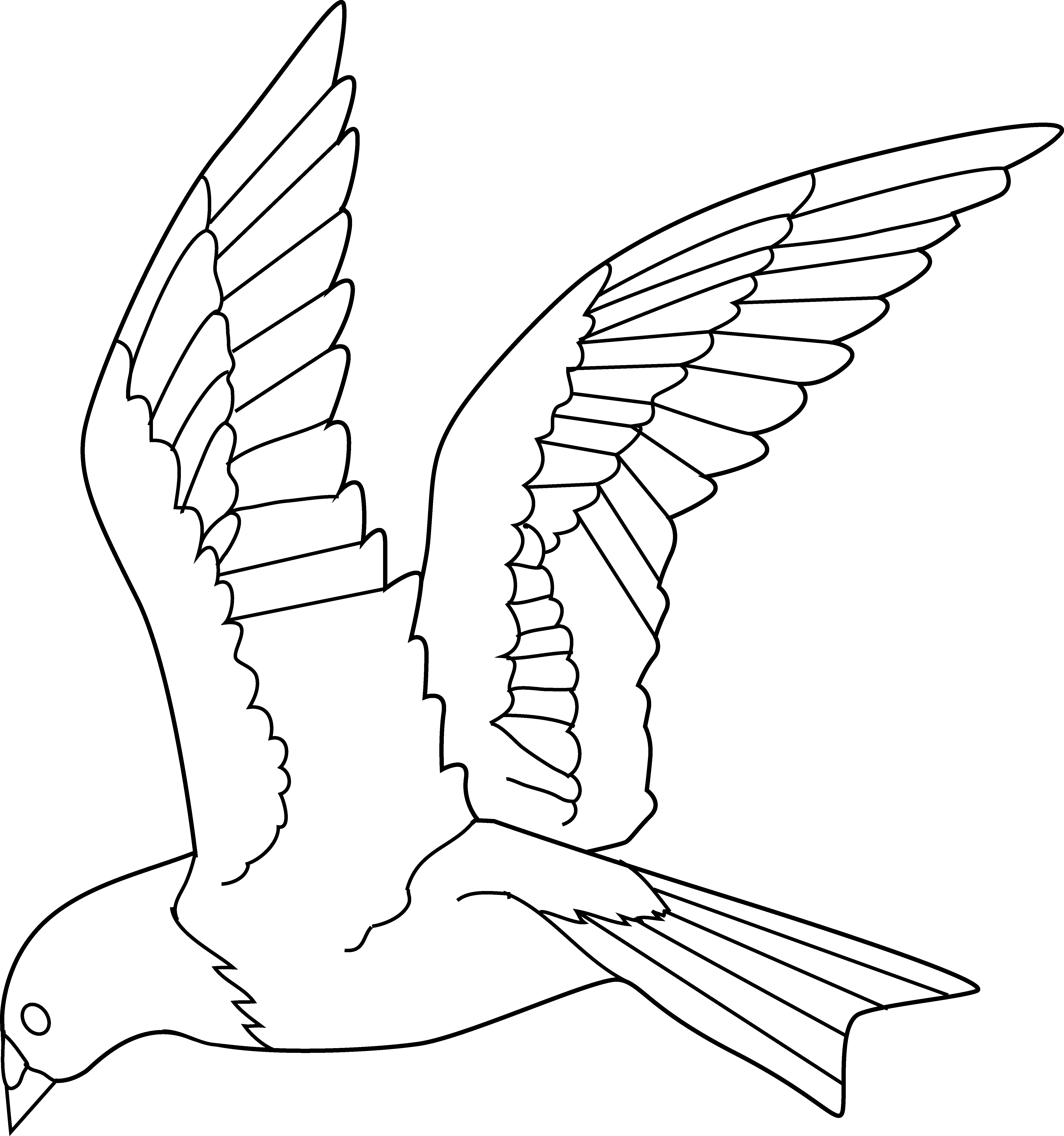 jpg free Flying Bird Coloring Page