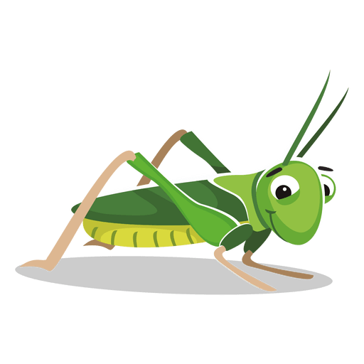 jpg royalty free stock Cricket insect png images. Grasshopper clipart transparent