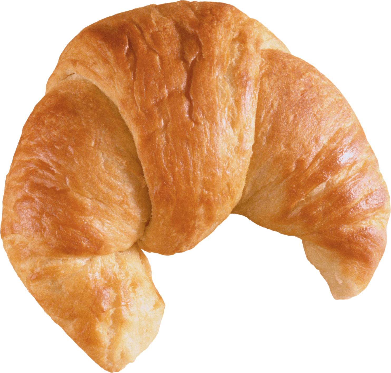png library download Bread front png stickpng. Croissant transparent.