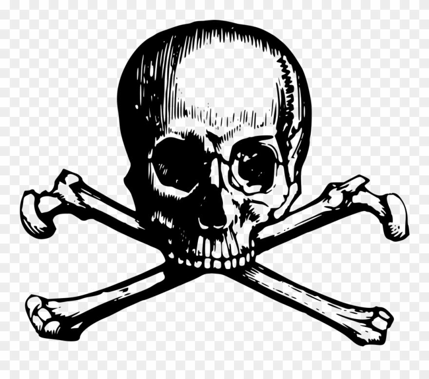 banner royalty free stock Skull and crossbone webweaver. Crossbones clipart