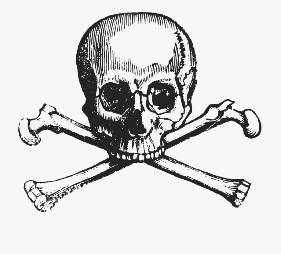 svg Skull and crossbones human. Bone transparent cross bones