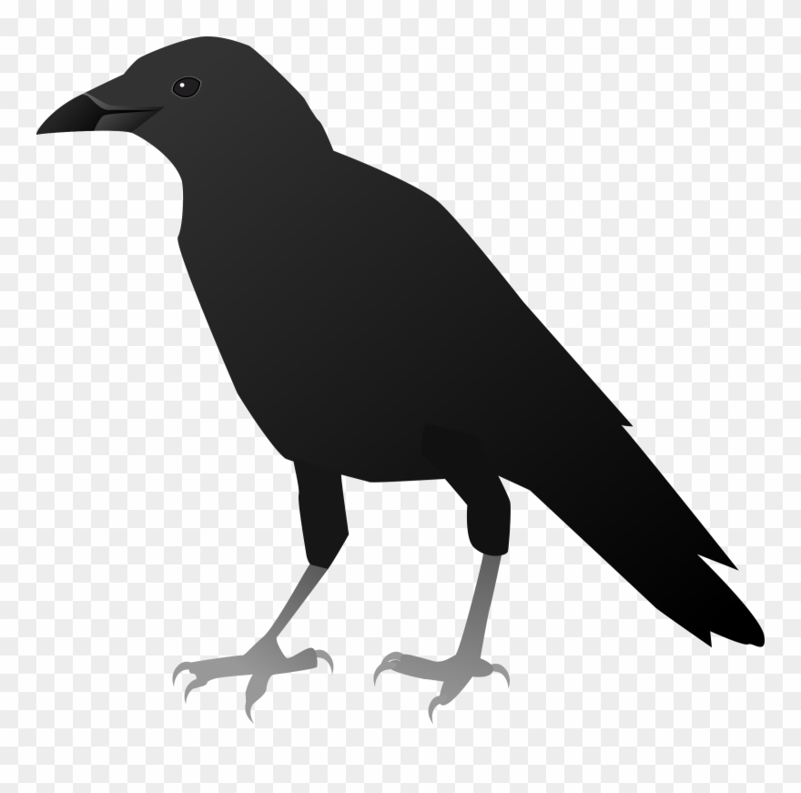 clip free stock Png download pinclipart . Crow clipart.