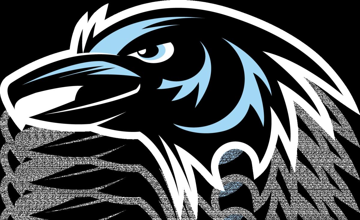vector royalty free stock Crow clipart head. Auburn riverside high school
