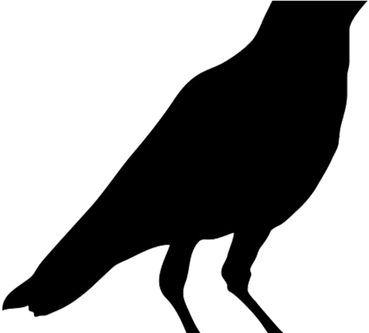 svg library Crow clipart head. Black bird printable png