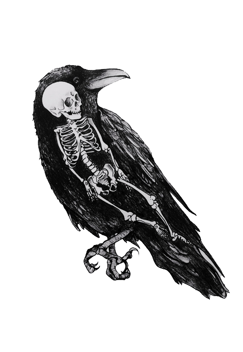 clip black and white stock The crow wondered how. Drawing charcoal raven
