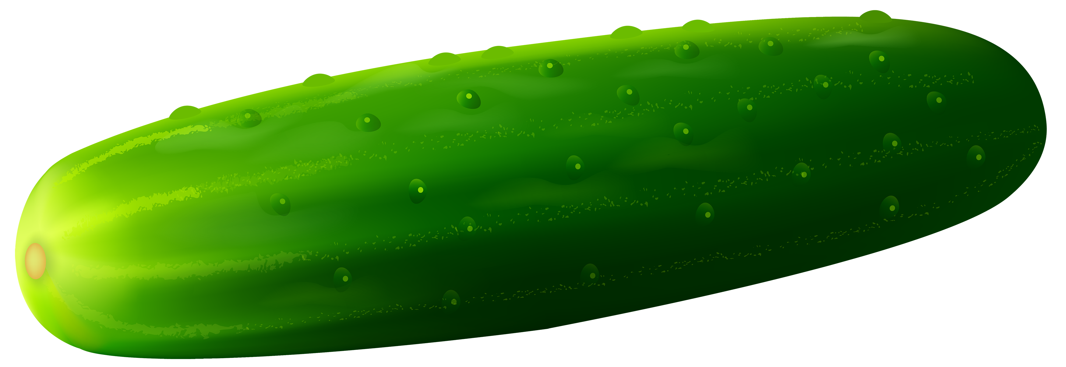 svg freeuse download Cucumber clipart. Png best web