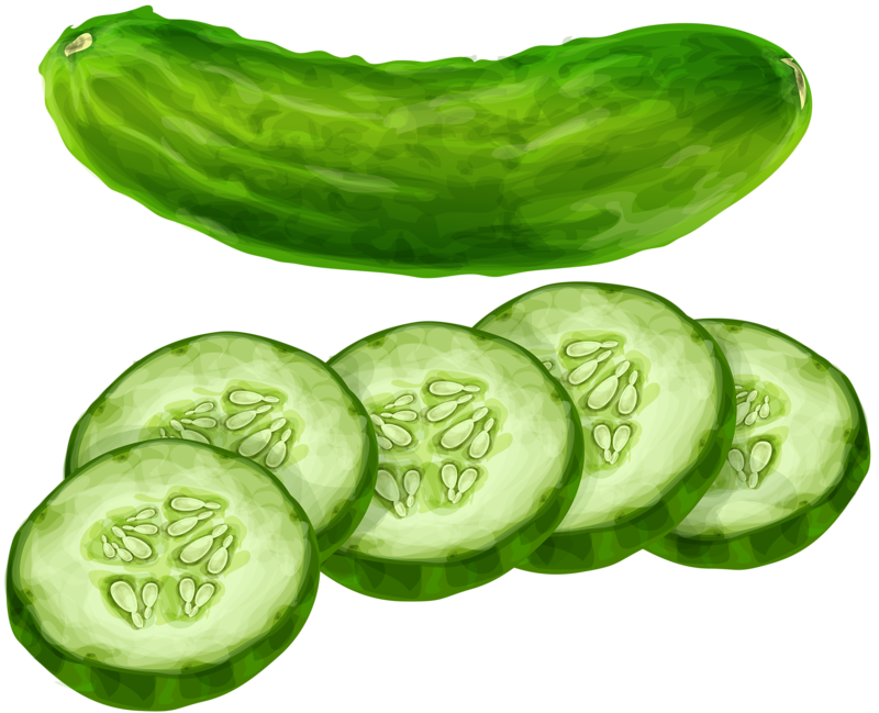 clip stock Cucumber clipart.  png pinterest food