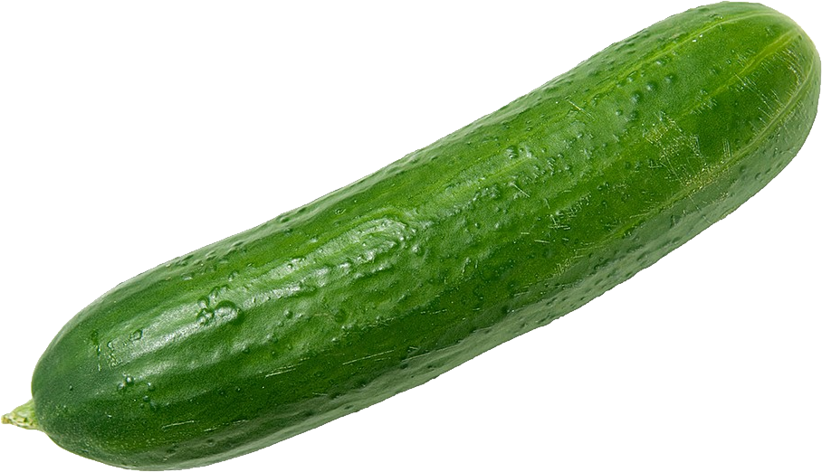 png transparent Transparent background free on. Cucumber clipart