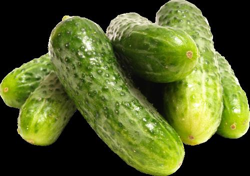 picture Cucumber Nine