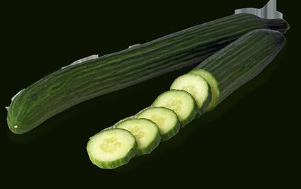 image freeuse Long English Cucumbers