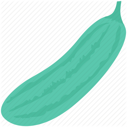 jpg transparent library Food by creative stall. Cucumber vector luffa