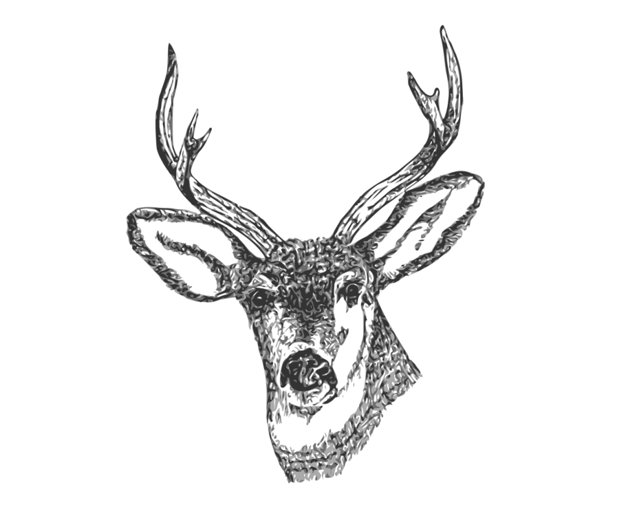 clip art royalty free stock Deer Drawing Pencil Antler Curtain free commercial clipart