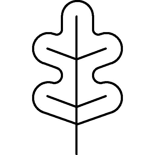 freeuse stock Curved leaf variant