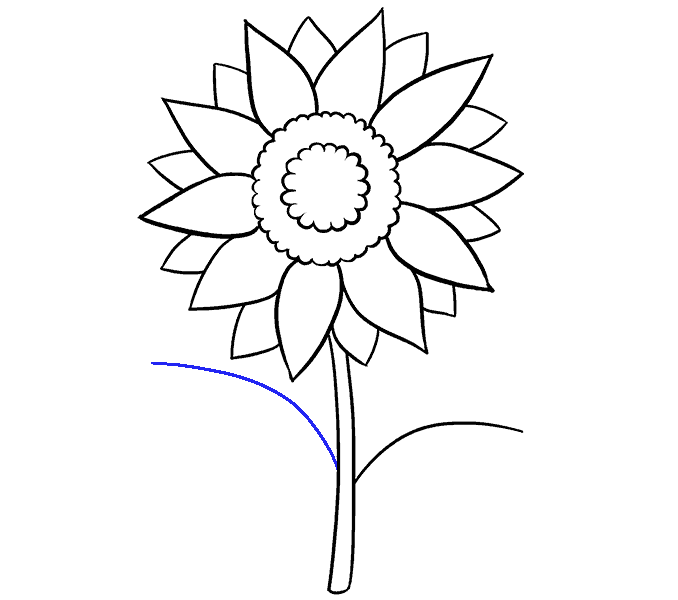 png free stock How to Draw a Sunflower