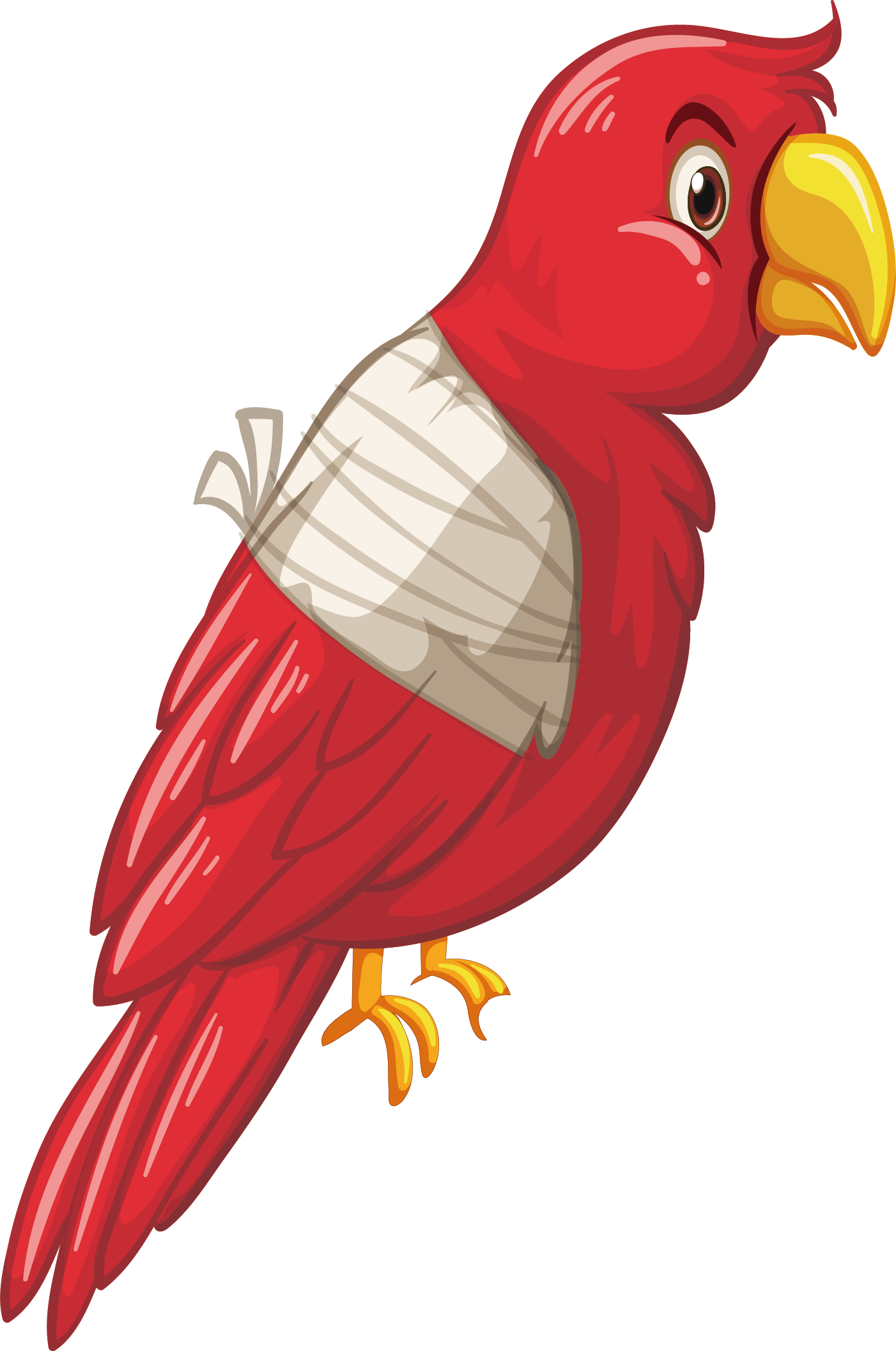 graphic transparent library Cute Parrot Clipart at GetDrawings