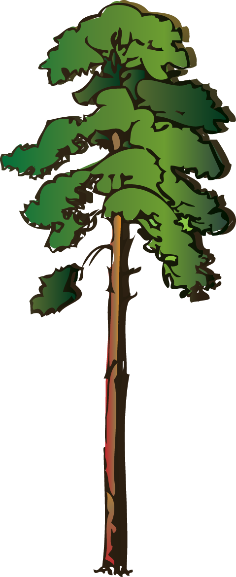 svg free stock Image result for cartoon tree