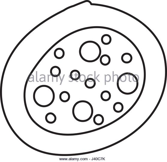 clip black and white stock Cytoplasm drawing. At getdrawings com free