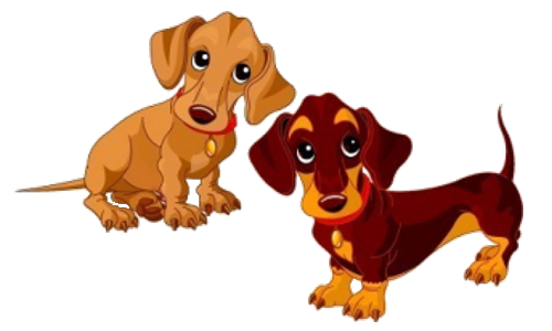 png freeuse download Dachshund Puppy