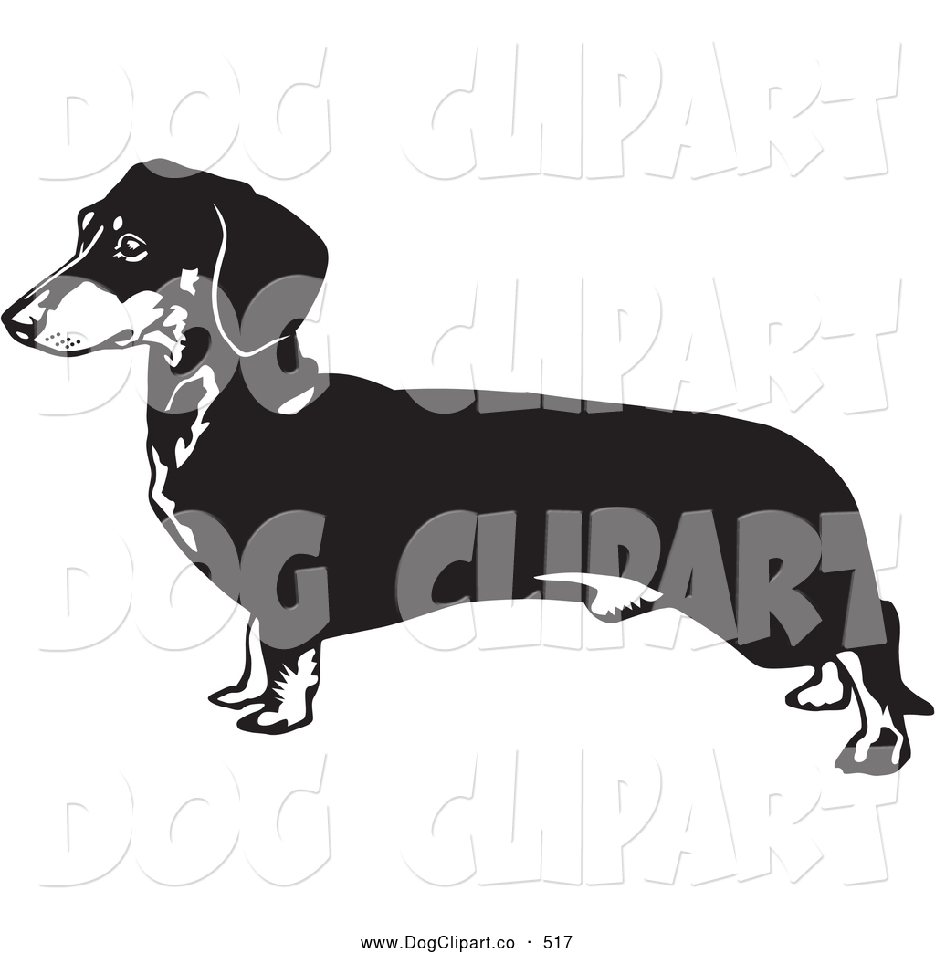 clipart library stock Dachshund Puppy Cliparts