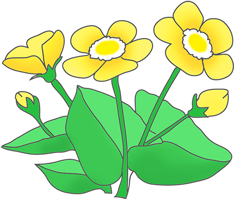 picture Flower at getdrawings com. Daffodil clipart.
