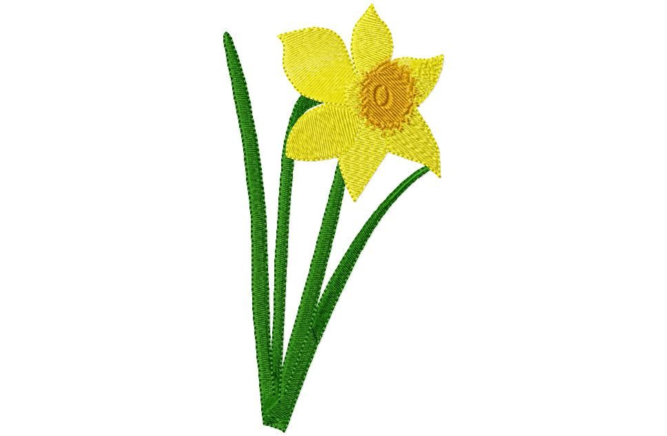 picture library Daffodil clipart. Graphics daffodils free clip