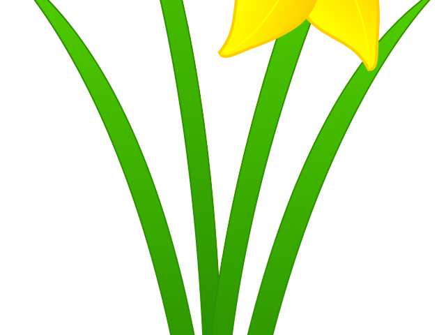 jpg library download Daffodil Clipart