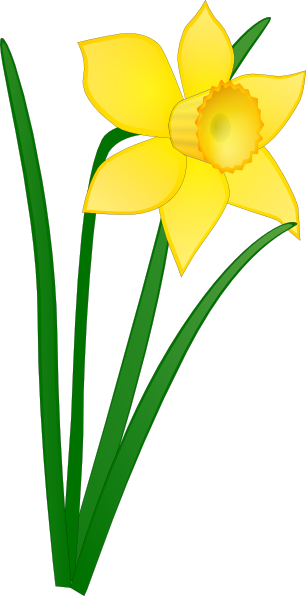 png black and white download St davids day free. Tulips clipart daffodil