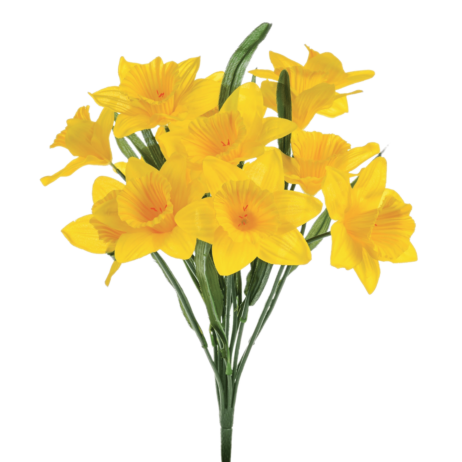 picture library Daffodil clipart daffodil bouquet. Single transparent png stickpng