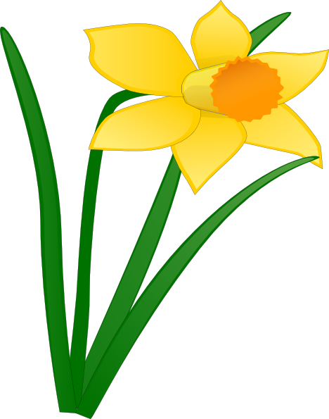 image royalty free stock Daffodil Flower Clip Art