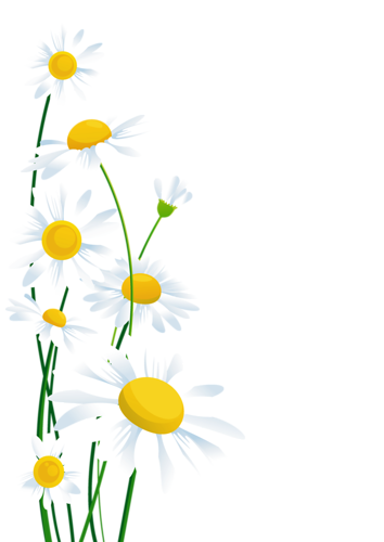 clip art freeuse download Daisies clipart rustic.  stationary clip art