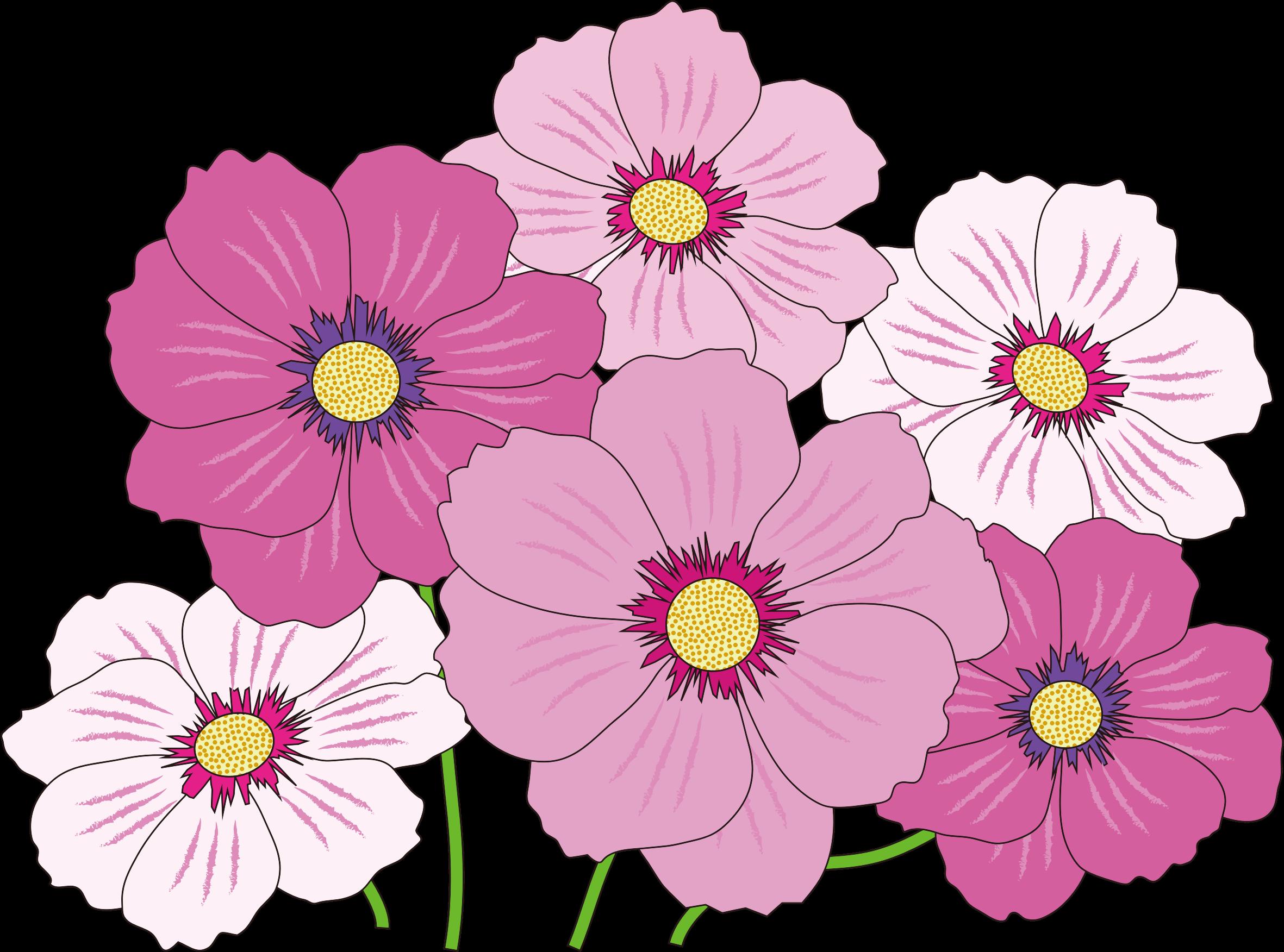 jpg royalty free Daisies grassy frames illustrations. Mango clipart flower
