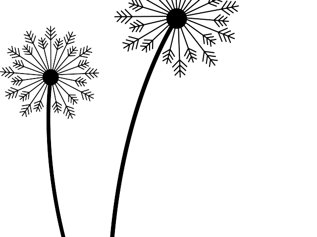 image black and white download Free on dumielauxepices net. Dandelion clipart.