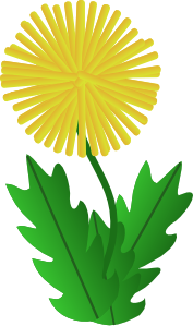 svg transparent Clip art at clker. Dandelion clipart.