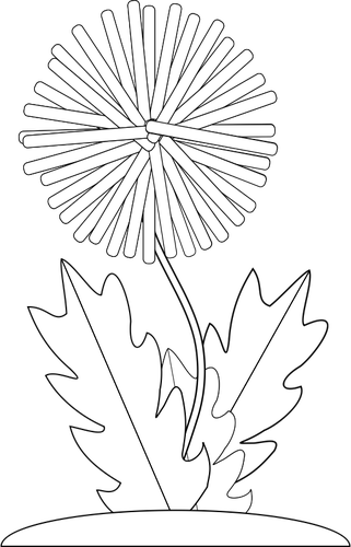 royalty free Dandelion black and white. Dandelions drawing step by
