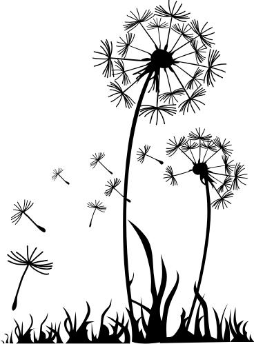 jpg black and white download Dandelion clipart zentangle.  google pinterest