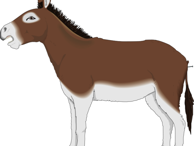 image library library Dead clipart dead donkey. Free on dumielauxepices net