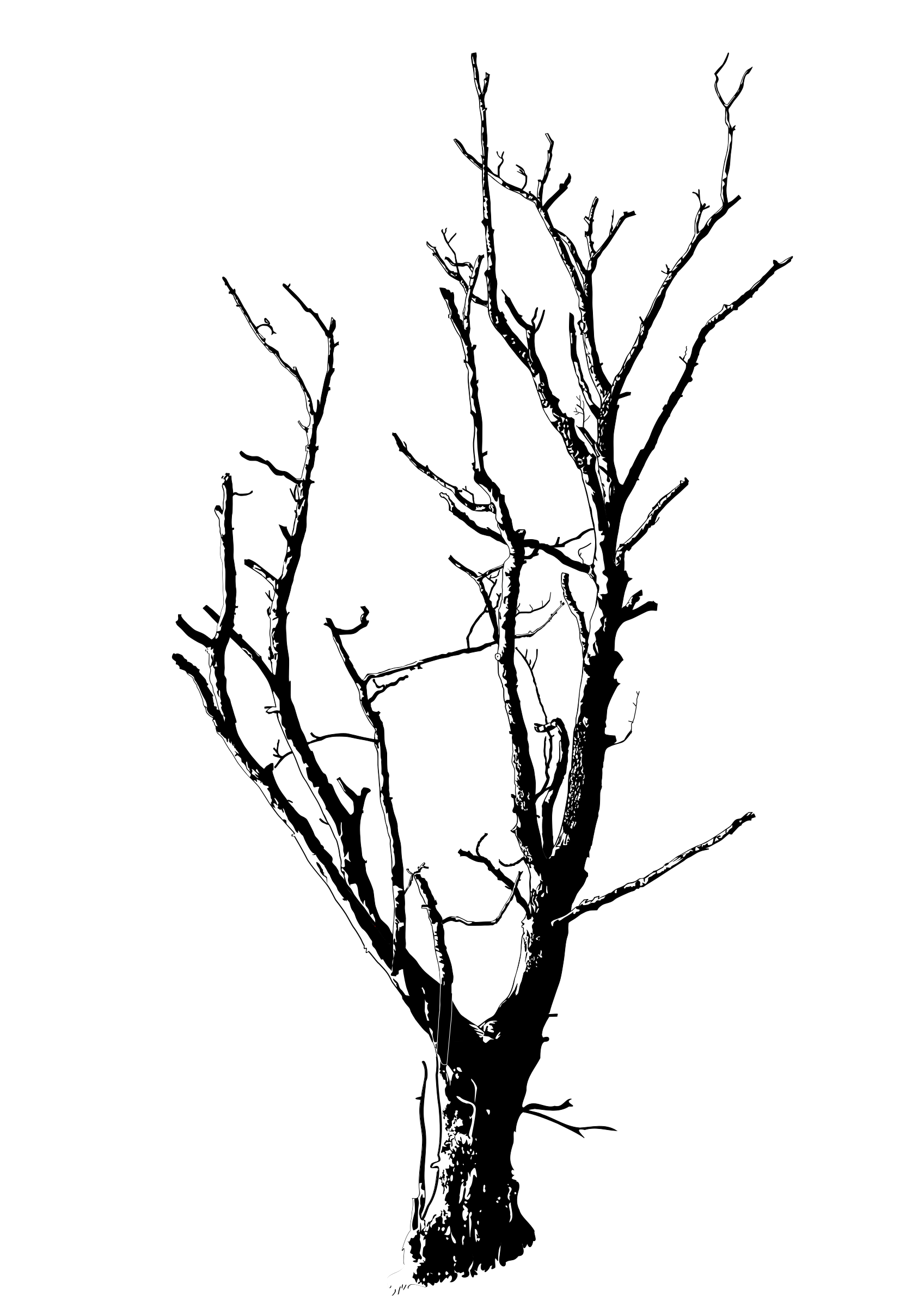 picture freeuse library Drawn dead black and. Recursive drawing tall tree