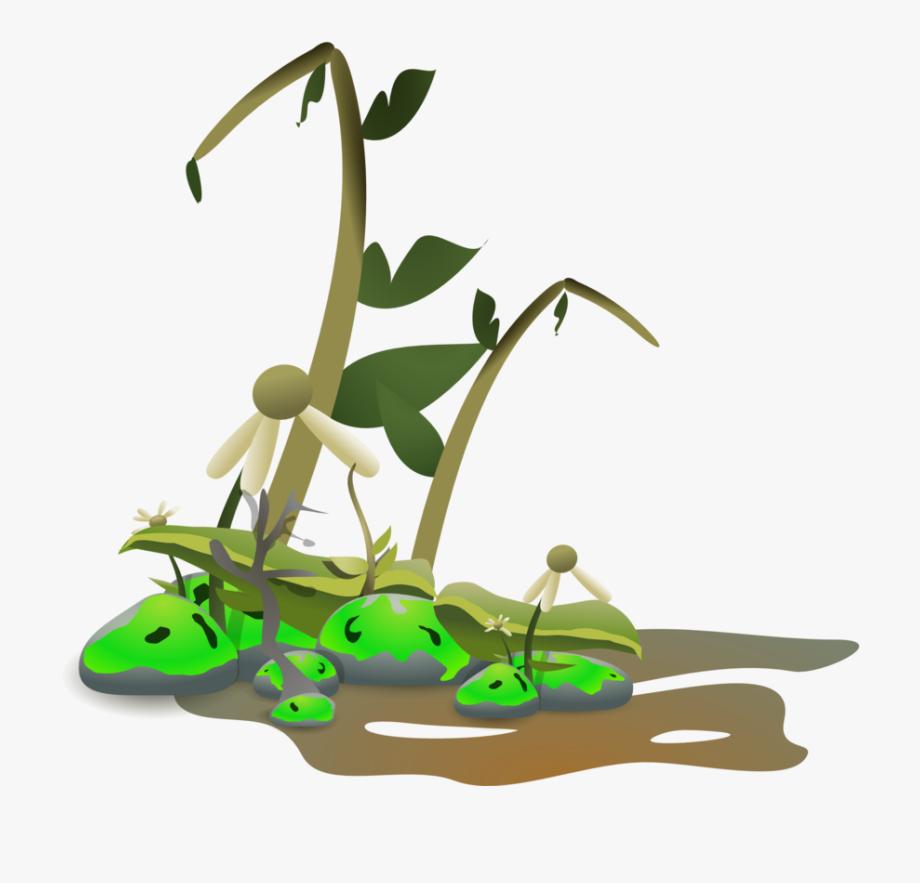 clip transparent download Distopia clip art free. Dead plants clipart