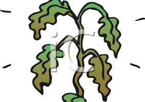 clip black and white Dead plants clipart. Plant portal