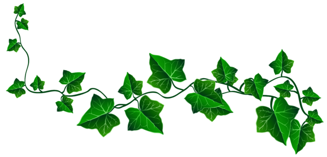 graphic free library decoration clipart plant #32345788
