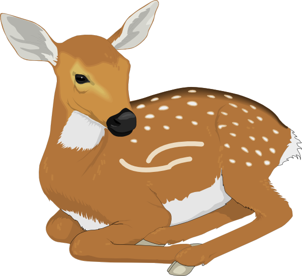 picture download Deer clipart. Free