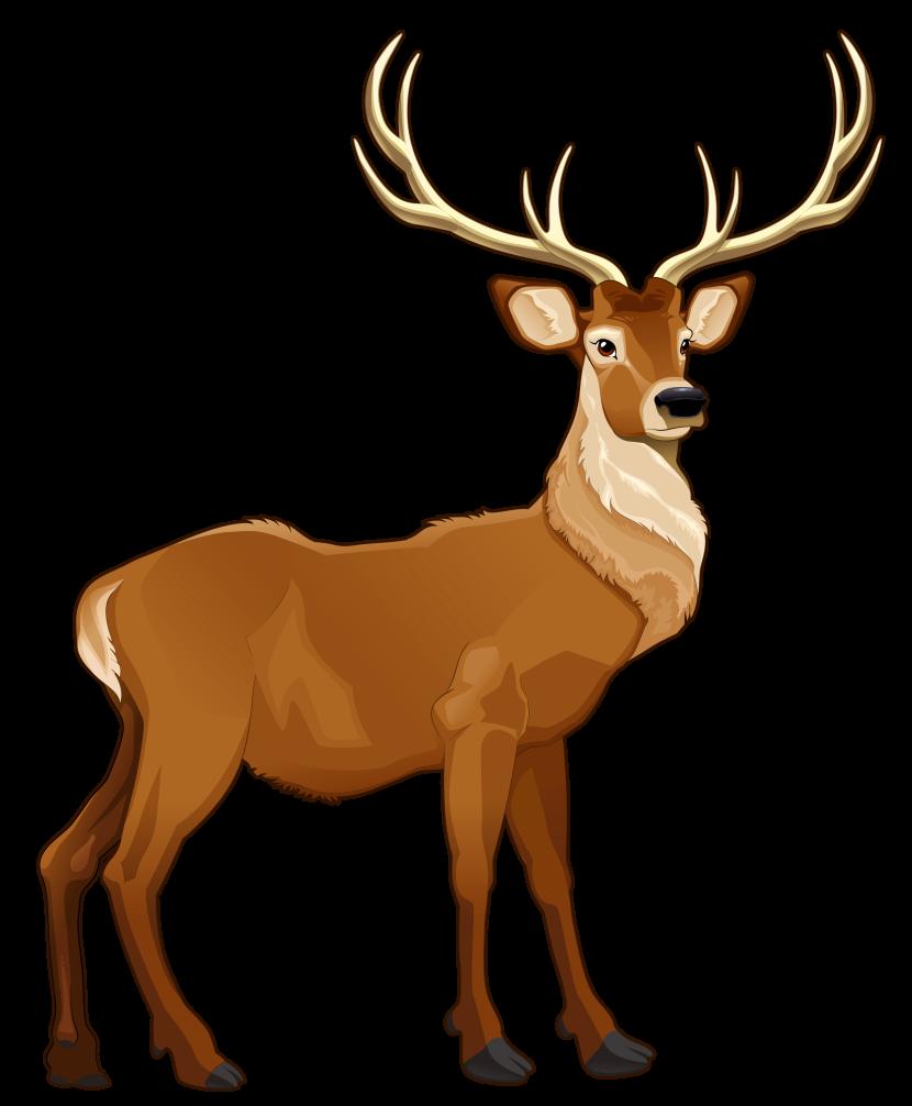 png free library Animal deer free on. Mule clipart brown.