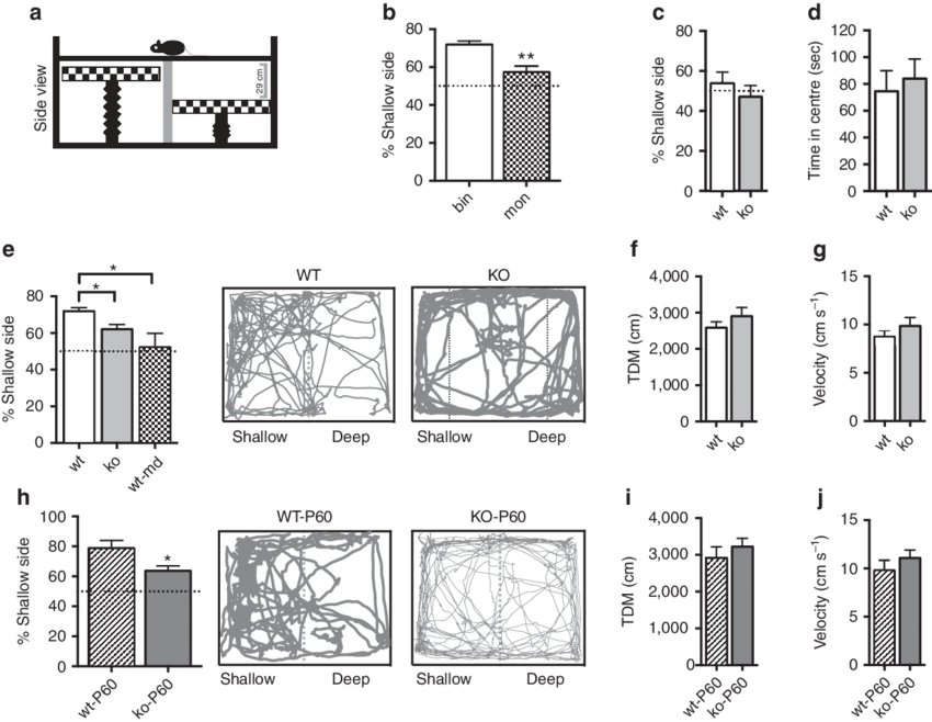 svg black and white Impaired perception in mir. Depth drawing