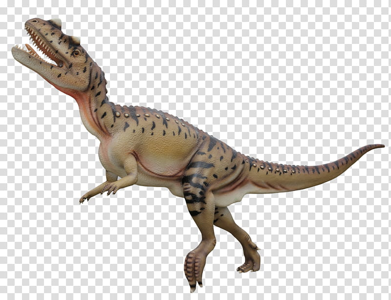 image freeuse library Dinosaurs brown and beige. Dinosaur transparent