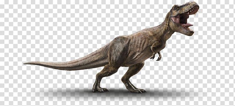 png royalty free download Triceratops velociraptor jurassic park. Dinosaur transparent