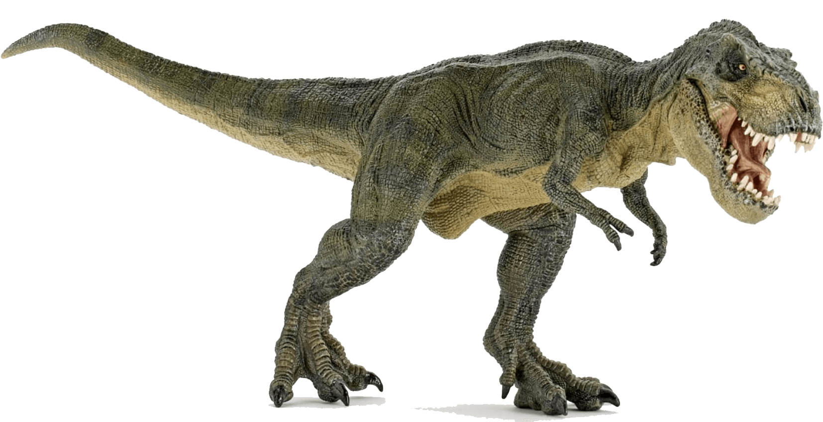 clip freeuse library Dinosaur Angry transparent PNG