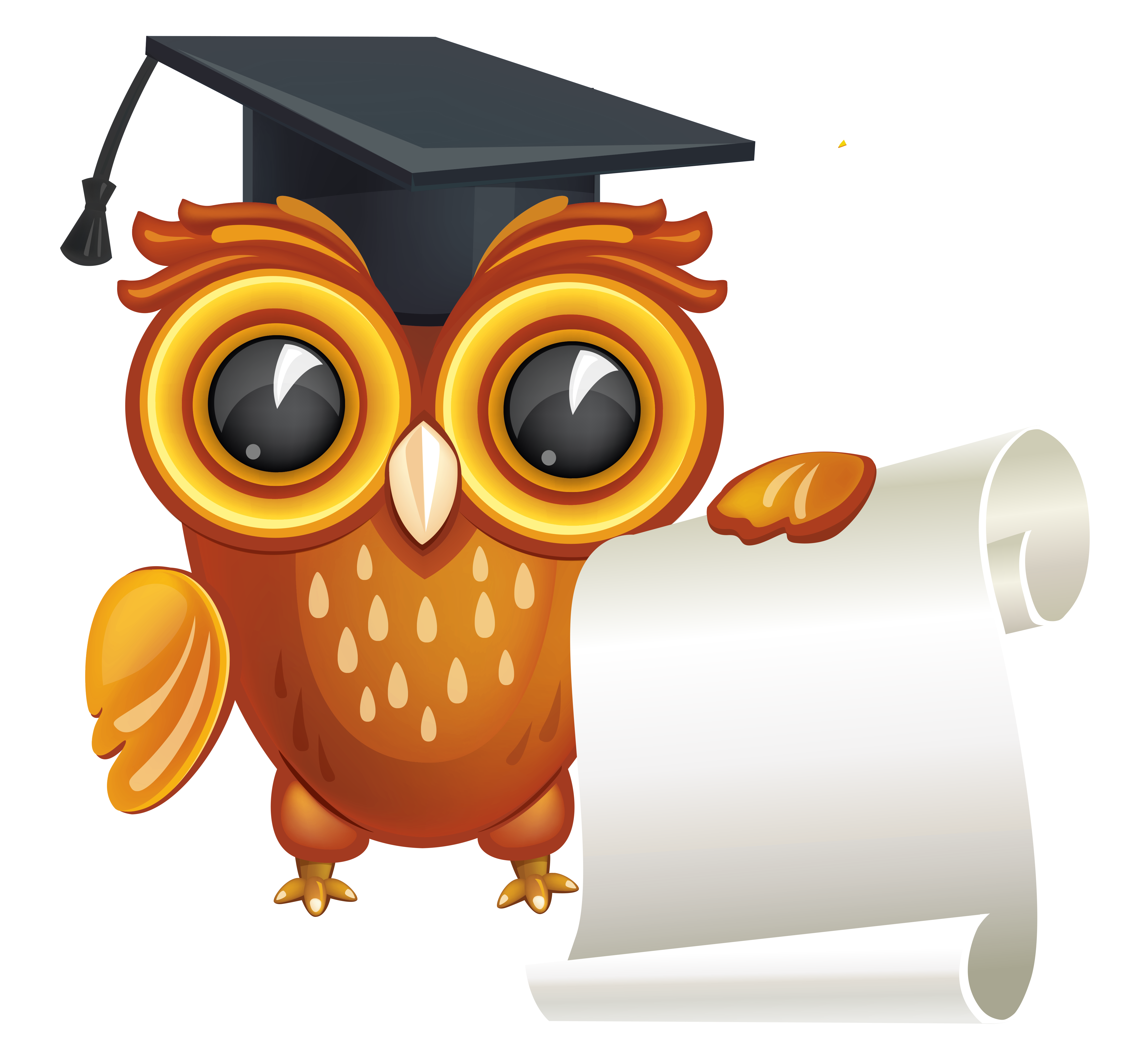graphic transparent download With diploma png image. Graduation clipart owl