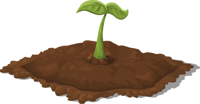 image royalty free stock Dirt clipart. Tree growth free on.